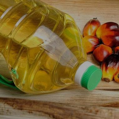 Aceite y grasa vegetal