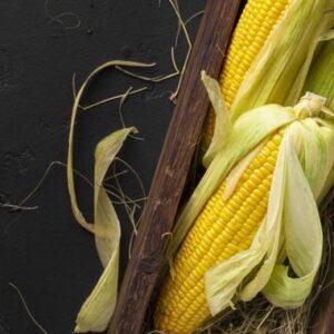 El maíz dulce una potente fuente de energía